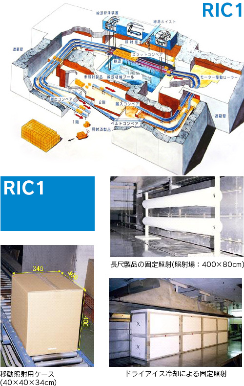 ric01